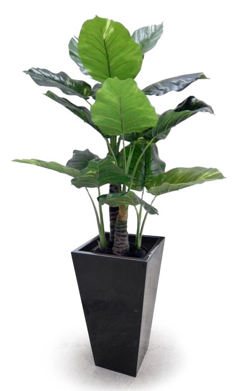 900mm Wedge Planter with Insert