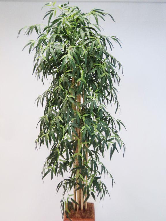 200CM BAMBOO TREE