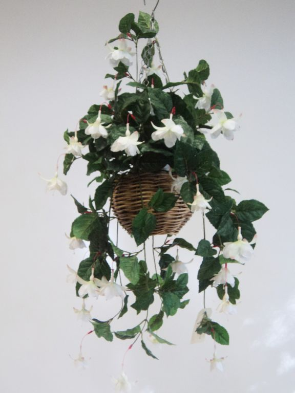 FUCHSIA BASKET WHITE