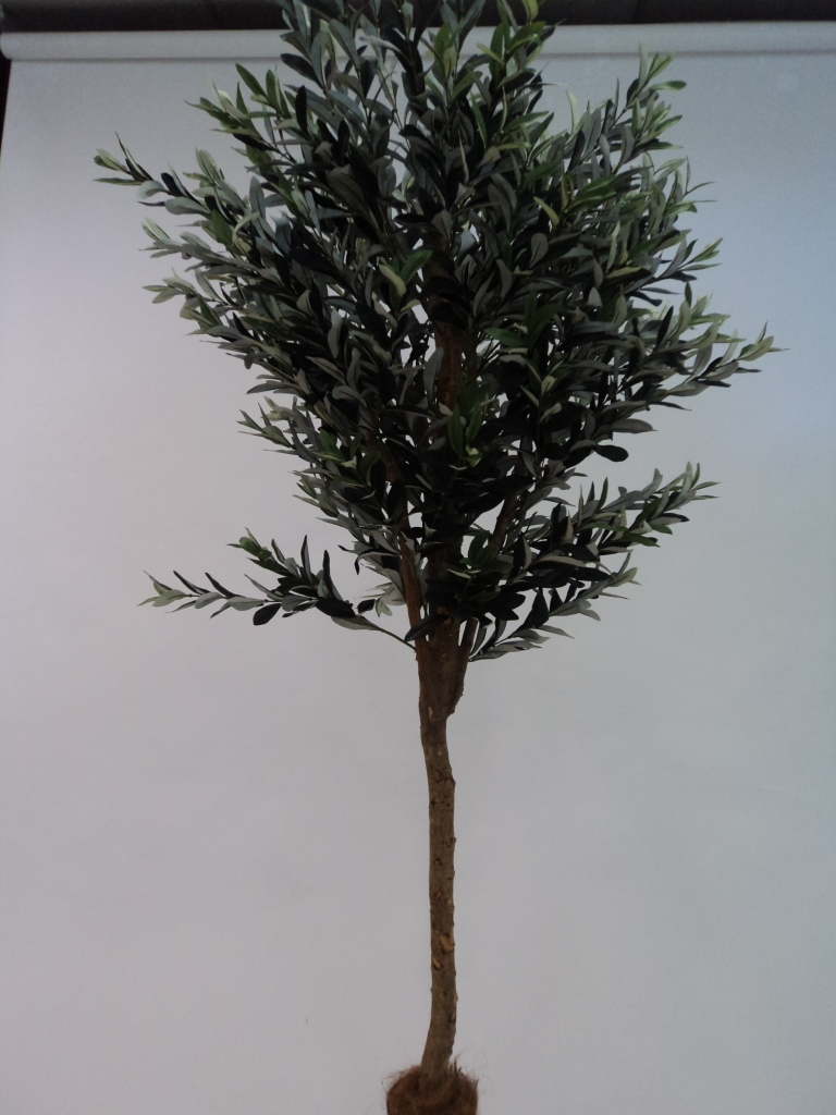 180CM OLIVE TREE